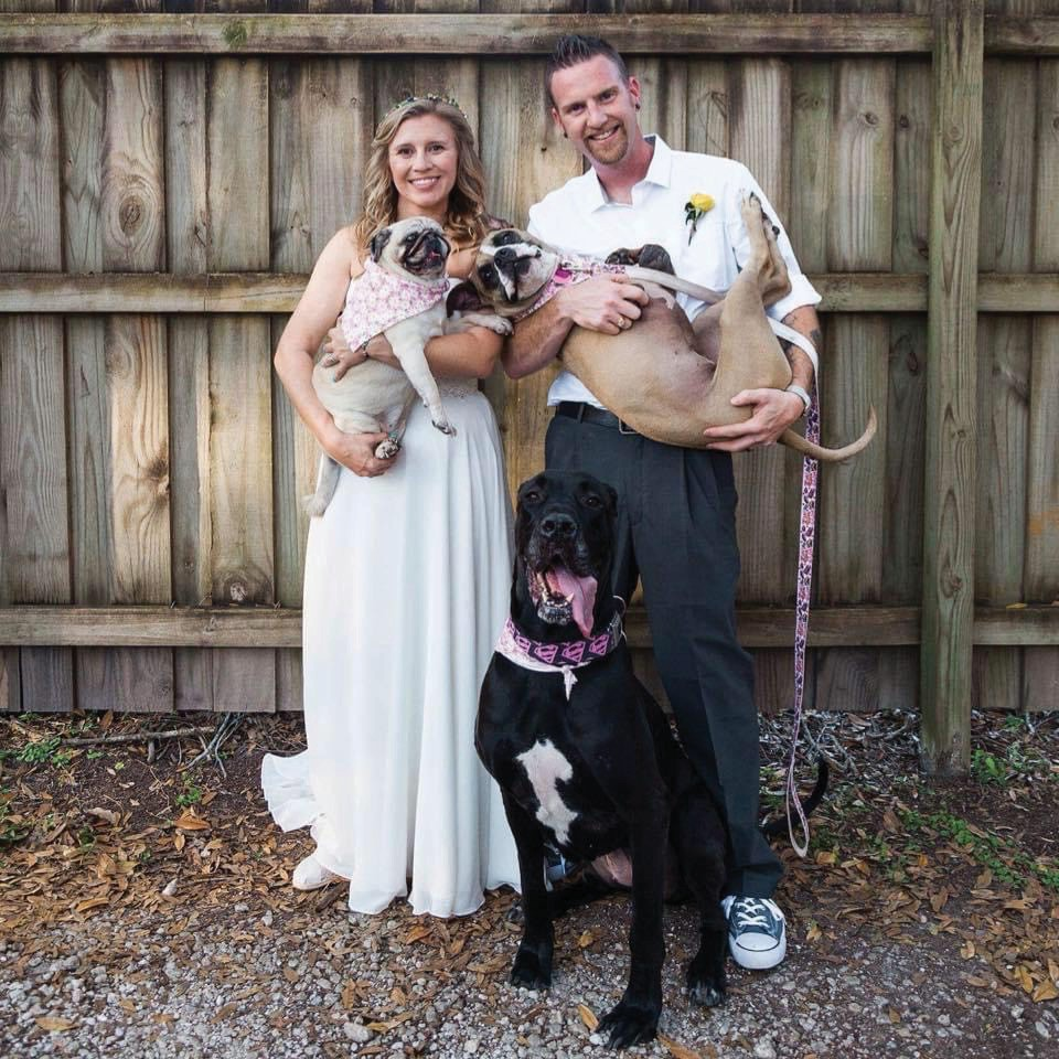 Left: Jessica and Dirk Purdy on their weddingw day with Lola the pug, Ellie the boxer mix and Maci the Great Dane. Lola and Maci have since crossed the rainbow bridge.